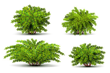 Shrubbery, 3d isometric bushes isolated on white vector set