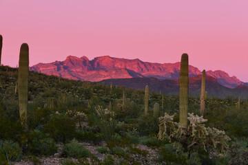 Sunset Ajo Range Organ Pipe Cactus NM landscape AZ