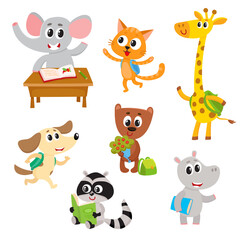 Cute little animal students, characters studying, reading, going to school, cartoon vector illustration isolated on a white background. Little baby animal students with backpacks and books, studying