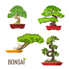 Set of bonsai Japanese trees grown in containers vector illustration