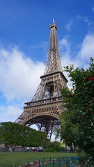 Photo of Eiffel Tower as seen from Champ de Mars, Paris, France