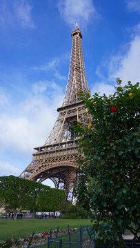 Photo of Eiffel Tower as seen from Champ de Mars, Paris, France