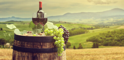 Wall Mural - Red wine with barrel on vineyard in green Tuscany, Italy