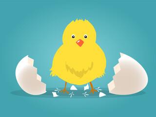 Chick born broken shell egg vector