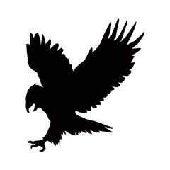 hunting eagle silhouette, bird animal feather vector illustration