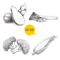 Hand drawn sketch style vegetables set. Leeks and slices, eggplant and half aubergine, broccoli and sweet corn slice. Farm fresh food isolated on white background.