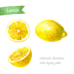 Lemon whole and sliced isolated  watercolor illustration