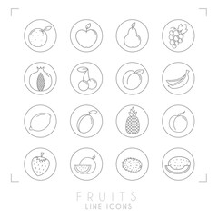 Set of line Fruit icons in outline circles. Flat style. Orange, apple, pear, grape, pomegranate, cherry, apricot, banana, lemon, plum, pineapple, peach, watermelon, kiwi, melon, strawberry.