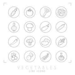 Set of line vegetable icons in line circles. Flat style. Carrot, tomato, leek, cabbage, onion, mushroom, eggplant, cucumber, pepper, broccoli, potato, corn, radish, beet root, peas, garlic.