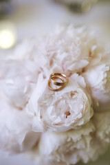 Wedding rings on pink roses