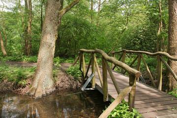Holzbrücke, Wanderweg