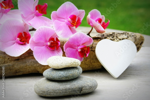 orchid e rose empilement de galets ambiance zen sur fond bois photo libre de droits sur la. Black Bedroom Furniture Sets. Home Design Ideas
