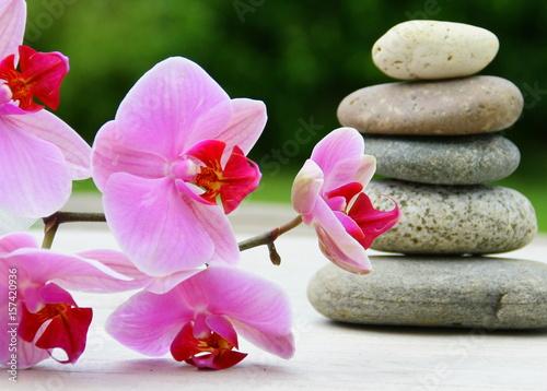 orchid e rose empilement de galets ambiance zen sur fond bois imagens e fotos de stock. Black Bedroom Furniture Sets. Home Design Ideas