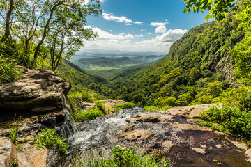 Waterway to the mountain at the Lamington national park