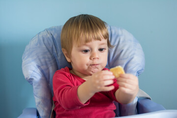 Baby boy eating cheese pie - gibanica