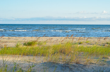 Wild sandy beach in the summer morning with clear blue sky. Baltic Sea coastline, Latvia.