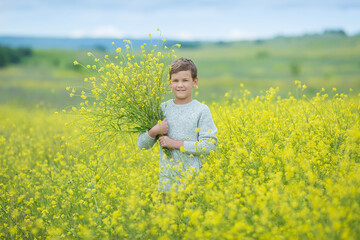 Happy cute handsome little kid boy on green grass lawn with blooming yellow dandelion flowers on sunny spring or summer day. Little boy dreaming and relaxing collecting a bouquet