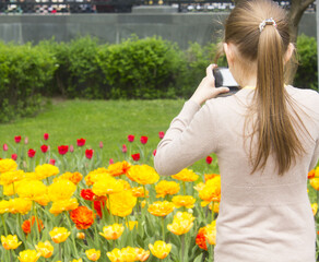 girl pictures of tulips