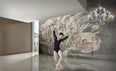 Ambiente con ballerina