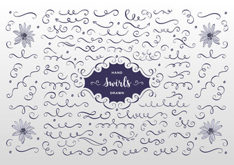 Vector swirls and flourish collection. Hand drawn design elements, flowers sketch