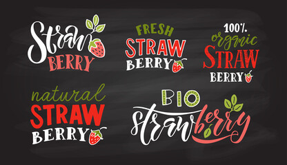 Hand sketched strawberry lettering typography. Concept for farmers market/organic food/natural product design/juice/pie/jam