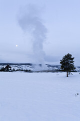 Winter, Old Faithful Geyser, Yellowstone NP