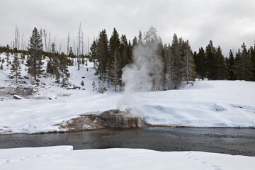 Riverside Geyser, Winter, Yellowstone NP