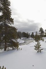 Firehole River, Winter, Upper Geyser Basin, Yellowstone NP