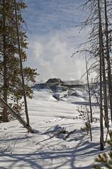 Winter, Upper Geyser Basin, Yellowstone NP