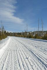 Road, Winter, Yellowstone NP