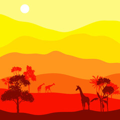 vector landscape with giraffes