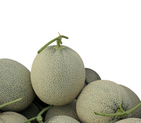 Melon or Cantaloupe fruit new harvest plucked from the garden, isolated on white background with clipping path.