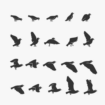 Animation Dove flying Vector Illustration