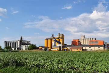 Three silos and young sunflower field in springtime