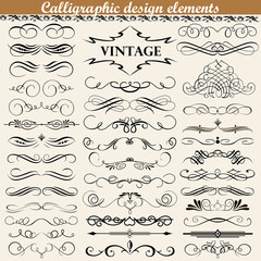 illustration set of vintage calligraphic design elements
