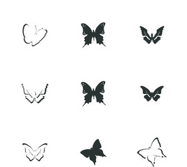 butter fly icon set