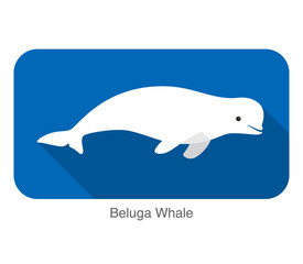 Beluga whale swimming in the water, vector illustration