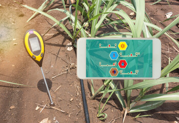 soil meter for measured 4 indicator in the soil including PH, Lux meter, temperature, Moisture in the sugarcane field which use dripping irrigation water system