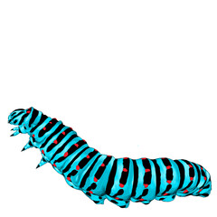 blue caterpillar crawling, sketch vector graphics color picture