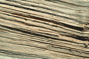Texture wood board background