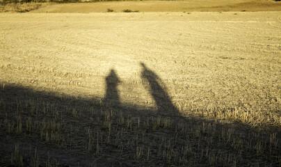 Shadow of people field