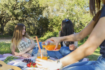 Woman pouring juice with friends relaxing during picnic