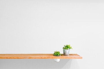 Wooden shelf on white vintage wall with plant.