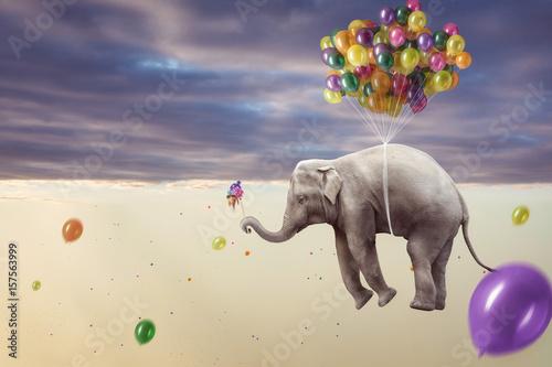 """""""elefant hängt an mehreren luftballons"""" stockfotos und"""