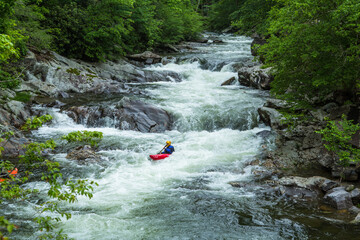 Whitewater Kayak Ride On River In Smoky Mountains Wall mural