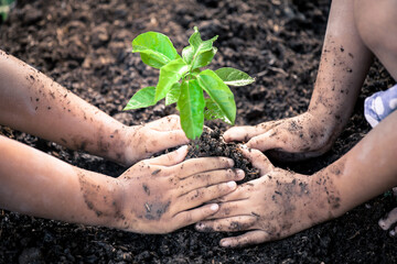 Two little girls hand planting young tree on black soil together as save world concept in vintage color tone