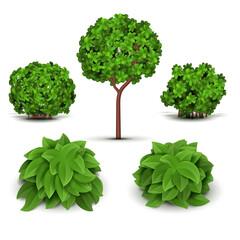 Garden bush with green leaves vector set