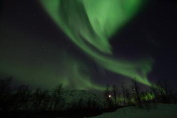Polarlichter nahe Lyfjord, Norwegen