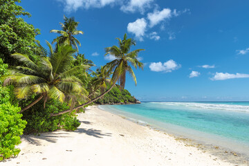 Amazing Tropical beach,