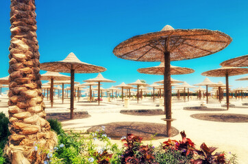 Chaise lounges and parasols on the beach against the blue sky and sea. Egypt, Hurghada